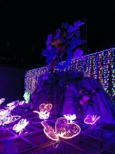 鄢陵国家花木博览园-鄢陵-_CFT01****3143161