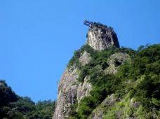 龙湾潭国家森林公园-永嘉-2337700