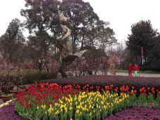 南山植物园-重庆-心可以自由飞
