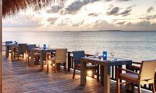 Samsara Restaurant-神仙珊瑚岛-晓目