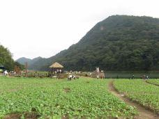 石灶天池-从化区-广州丁满
