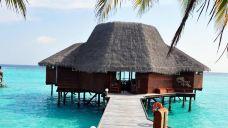 椰子水疗中心