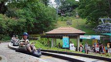 圣淘沙天际线斜坡滑车