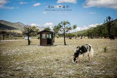 甘海子-丽江-2971320
