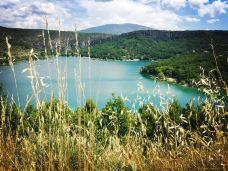 圣十字湖-法国-鱼鱼