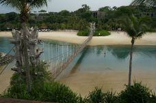 巴拉湾海滩-新加坡-鲸鱼吃货模式开启