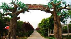 苏北花卉示范园-沭阳-E02****43