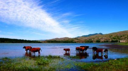 天池湖群3