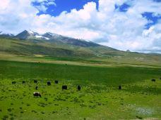 羌塘草原-那曲-万Zhao