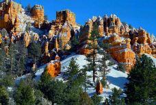 布莱斯峡谷国家公园-犹他州-兔爺