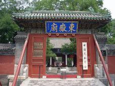 东岳庙-西塘-尊敬的会员