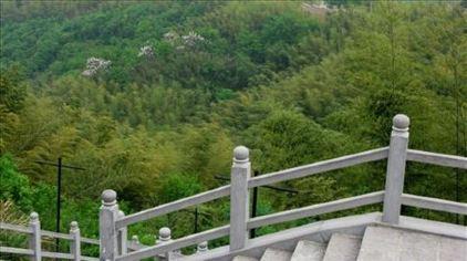 西九华山2