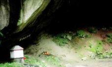 桃园蝙蝠洞-桃园市-白袍小将
