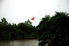 日照海滨国家森林公园-日照-hu****chi