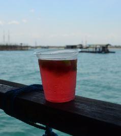 斯里巴加湾市游记图文-【加游站】喬豆豆的文莱+巴厘岛游