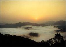 九龙山自然保护区-遂昌-137****4573