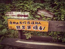 西塘风景区-西塘-183****2370