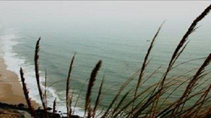 金色海岸9