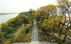 茱萸湾风景区-扬州-赖宝小乖