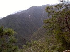 云阳国家森林公园-茶陵-财迷女友