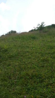 神农顶风景区-神农架