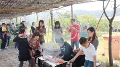 欢乐佳田农场9