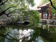 劳动公园-大连-云游四海翁