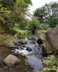 Agrowisata GUNUNG MAS Kebun Teh Walini-普卡