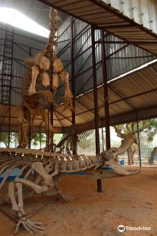 National Museum of Niger (Musee National du Niger)(Musee National du Niger)-尼亚美