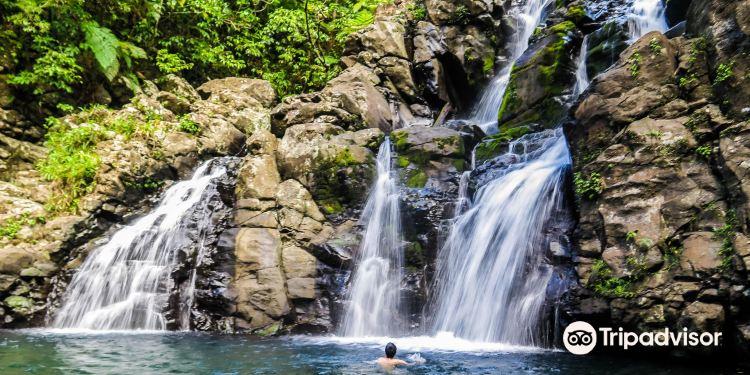 恩加梅阿岛图片